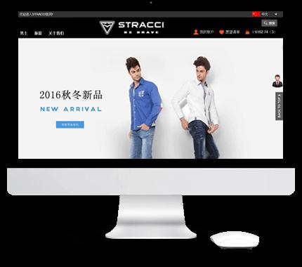 购物型网站建设
